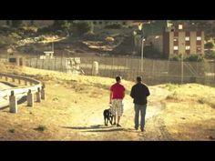 AMURALLADOS - Trailer del Documental. - YouTube