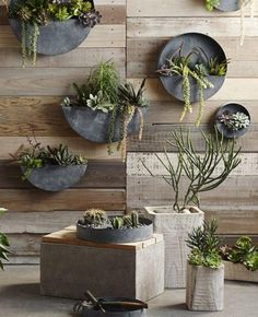 Living Wall Inspiration For Your Home   TheNest.com