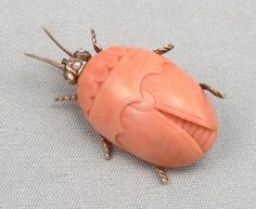 victorian insect jewelry | about Antique Victorian 14K GOLD Carved CORAL BEETLE Insect BUG ...