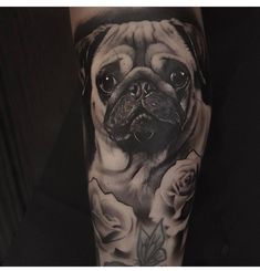 [Animal Facts + Tatts] Pugs – staciemayer.com