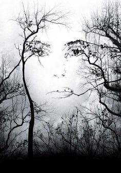дерево-лицо