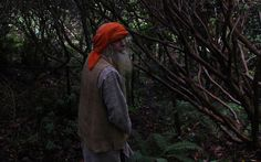 Beautiful story of Hermit Pete: 'Loneliness is just a feeling. It's no big deal'