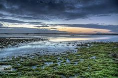 Blue morning - Pinned by Mak Khalaf A nice Sunrise in the nature of North Holland Landscapes 500pxLandscapeMorningSunrisebeautifulbluecloudslightreflectionskysunwater by klaasfidom