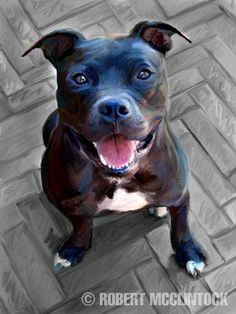 Blue Steel - Pit Bull Mix (artwork by Robert McClintock) Perros Pit Bull, Dog Poster, Steel Art, Dog Shedding, Pit Bull Love, Pitbull Terrier, Cool Artwork, Beautiful Artwork, Animal Paintings