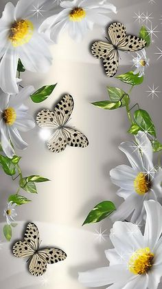 White Perfection in 2019 Wallpaper Nature Flowers, Flower Background Wallpaper, Flower Phone Wallpaper, Beautiful Flowers Wallpapers, Beautiful Nature Wallpaper, Butterfly Wallpaper, Heart Wallpaper, Cute Wallpaper Backgrounds, Pretty Wallpapers