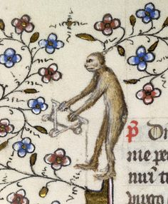 """Leaf from a Breviary - Hidden within a jungle of flowering vines, an ape attempts to unlock the secret to a three-dimensional puzzle. Medieval artists were fond of depicting animals, in particular apes and monkeys, engaged in human activities. In medieval Europe, the term """"aping"""" was used to describe the mimicking of human nature, so showing apes acting like people was a play on this idea. (The Walters)"""