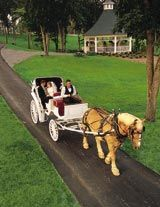 A romantic carriage ride to celebrate wedding your sweetheart. http://whitestoneinn.com/east-tennessee-weddings/