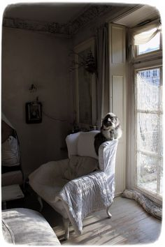 French Style, French Country, Meas Vintage, Hobbit, Shabby Chic, Lounge, Farmhouse, Dreams, Heart