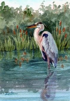 Daily paintings blog along with floral, seascape and pet portrait painting demonstrations by Janet Zeh