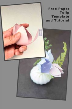 paper flower making svg and printable template Giant Paper Flowers, Tulips Flowers, Free Paper, Diy Paper, How To Make Paper Flowers, Paper Flower Tutorial, Flower Template, How To Make Diy, Flower Crafts