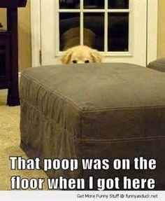 Sure it was..lol