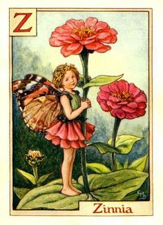 The Zinnia Fairy Cicely Mary Barker