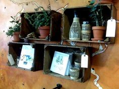 decorating with apple crates | Look! Apple Crate Shadow Boxes