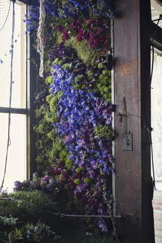 Lisa Waud ambitionne de remplir en Octobre de 100 000 fleurs les 15 pièces d'une maison abandonnée de Détroit qu'elle a acheté pour 500$ en laissant carte-blanche à des fleuristes. Pour tester son projet elle a passé deux jours avec des fleuristes à placer 4000 fleurs dans la maison la semaine dernière créant ainsi une …