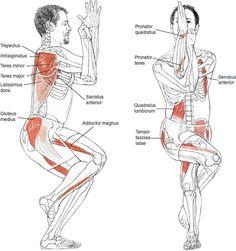 Garudasana Eagle Pose Image © Leslie Kaminoff's Yoga Anatomy   B e n e f i t s…