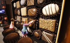 Natural History Museum welcomes 'Chocolate' exhibit