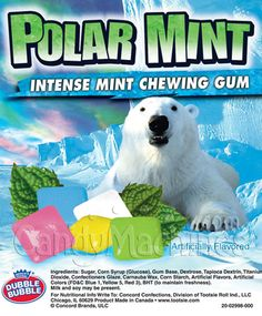 Polar Mint Chewing Gum Tabs by Dubble Bubble - 9900 ct.