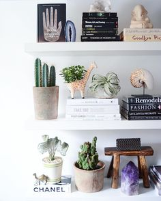 For those of you who liked the cute giraffe planter from @anthropologie , here is a close up #shelfie @apartmentf15