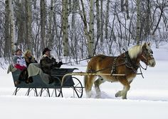So beautiful!  Sleigh ride to a cabin in Colorado for dinner. A Novel Creation