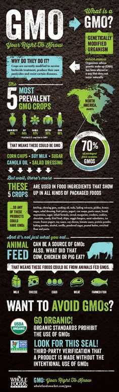 You have the right to know about GMOs! (Genetically Modified Organisms) // #infographics