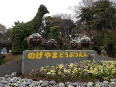 横浜市立野毛山動物園 (Nogeyama Zoological Park) in 横浜市, 神奈川県