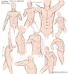 Male Torso Practice by https://www.deviantart.com/sellenin on @DeviantArt