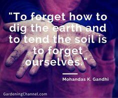 Mohandas K. Gandhi quote