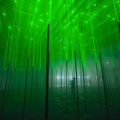 1-forest-interactive-musical-laser-installation-by-marshmallow-laser-feast