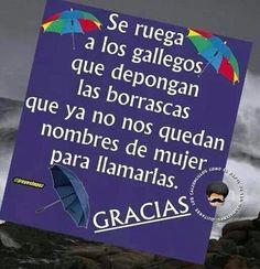 Viñetas sobre el temporal en Galicia   EcoListas Celtic, Frases, Amor, Octopus, Umbrellas, Finance, Hilarious Pictures, Poems