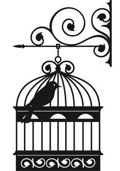 .passarinho na gaiola