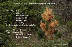 Photo taken by BSF class member and then she applied scripture from current study of Moses.