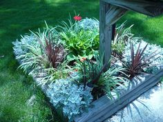Perennial, maintenance free flower bed. dusty miller, varigated liriope and darker grass. surrounded by landscape timbers