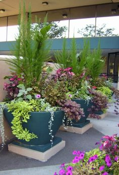 Big flower pots for your garden