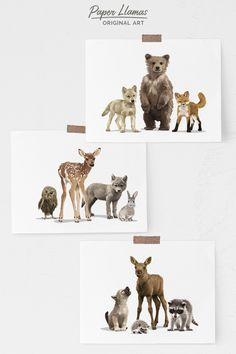 Baby woodland animal nursery art – set of 3 unframed shipped prints – mountain adventure children's art – Gender neutral baby room decor – Debbie Hall - Baby Animals Baby Room Wall Art, Baby Room Decor, Art Wall Kids, Baby Artwork, Room Baby, Boy Room, Woodland Animal Nursery, Woodland Animals, Woodland Critters