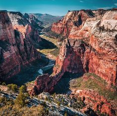 Observation Point, Zion National Park, Utah. 6500-feet elevation above sea level!