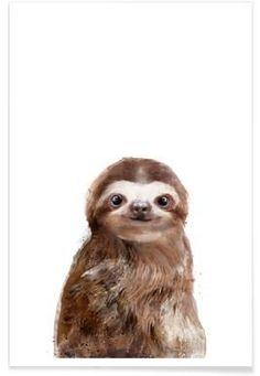 Little Sloth - Amy Hamilton - Premium Poster