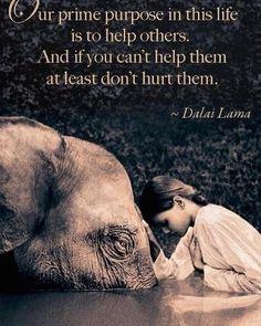 Good night. #kindness #good #life #humanism #wisdom #inspiration #love