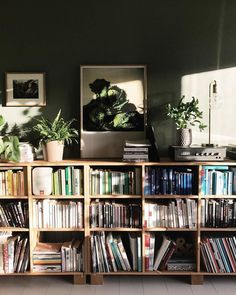 interior, farrow and ball, shelf, bookshelf, plants, green, cardboard green (bookshelf diy cardboard)
