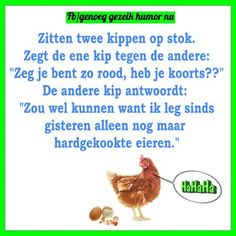 Image result for kippen moppen Cartoon Chicken, Humor, Funny, Image, Laughing, Humour, Funny Photos, Funny Parenting, Funny Humor