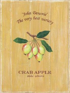 "Crab Apple Metal Sign by OMSC. $15.49. Glossy, full-color, enamalized imaged baked onto thick, 24-gauge steel. Ships in Ploy-bag for complete protection. Rounded corners with holes for easy hanging. Eco-friendly process, hand-made in the USA. This sign measures 9"" by 12"". This sign features art by Martin Wiscombe. Born and raised in Lyme Regis, Dorset, Martin studied illustration and design in the west country, then went on to spend more than 15 years working in London. After..."