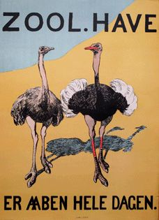 Ostrich poster from the Copenhagen Zoo. Vintage Travel Posters, Vintage Postcards, Vintage Ads, Copenhagen Zoo, Old Posters, Grafic Art, Art Deco Print, Funny Birds, Vintage Graphic Design