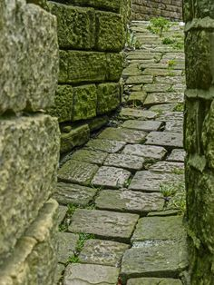 Ginnel by Meltham Parish Church