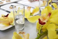 Beautiful, simple orchids strewn on a table....