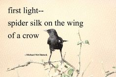 Haiku poem: first light-- by Michael McClintock. Very Short Poems, Haiku Poem, Write It Down, Crows, Ravens, One Light, Beautiful Words, Inspire Me, Are You The One