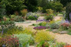 Beth Chatto - Dry Garden