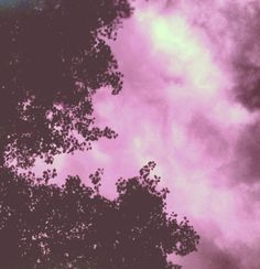 Pink painted sky
