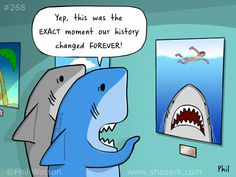 Shark cartoons and beach wear from Down Under Funny Animal Comics, Animal Jokes, Funny Comics, Funny Animals, Cute Shark, Great White Shark, Shark Shark, Really Funny Memes, Stupid Funny Memes