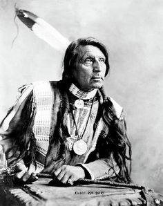 Native American Pictures, Native American Beauty, American Indian Art, Native American Tribes, Native American History, American Indians, Navajo, Art Indien, Oglala Sioux