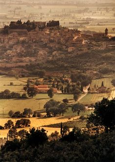 Photo by Ron Baxter Smith: Spello, Umbria Umbria Italy, In Vino Veritas, Beautiful Places In The World, Amazing Destinations, Fine Art Photography, Paris Skyline, Tourism, Art Gallery, Landscape