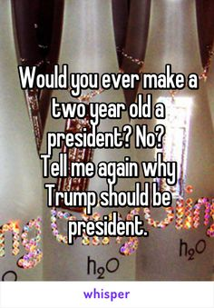 Would you ever make a two year old a president? No?  Tell me again why Trump should be president.